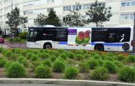 Le bus 379 augmente sa fréquence