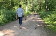 Pet-sitting : des jeunes Véliziens proposent leurs services