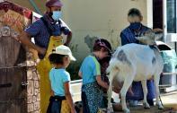 La ferme Tiligolo s'invite à l'école Exelmans